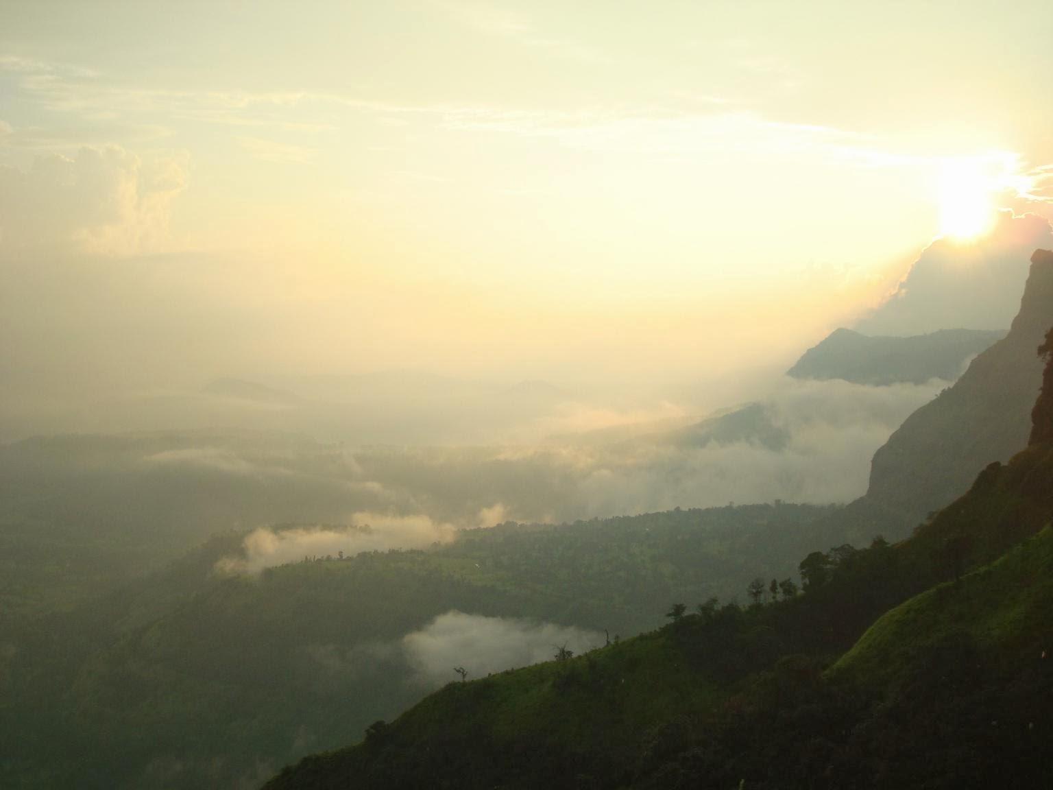 View of Konkan region from Madhe ghat